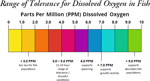 Chart labeled 'Range of Tolerance for Dissolved Oxygen in Fish.' Subheading Pars Per Million (PPM) Dissolved Oxygen. The chart is broken into ten sections, 0-1.0, 1.0-2.0, etc. There are five labels under the chart: 'Less than 3.0 PPM: too low for fish populations.' '3.0–5.0 PPM: 12-24 hour range of tolerance/stressful conditions.' '6.0 PPM: support spawning.' 'More than 7.0 PPM: supports growth/activity.' 'More than 9.0 PPM: supports abundant fish populations.'